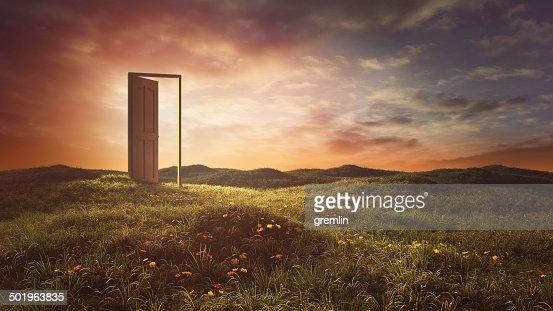 Open doors on the summer meadow