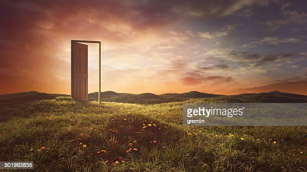Las puertas abiertas en el summer meadow