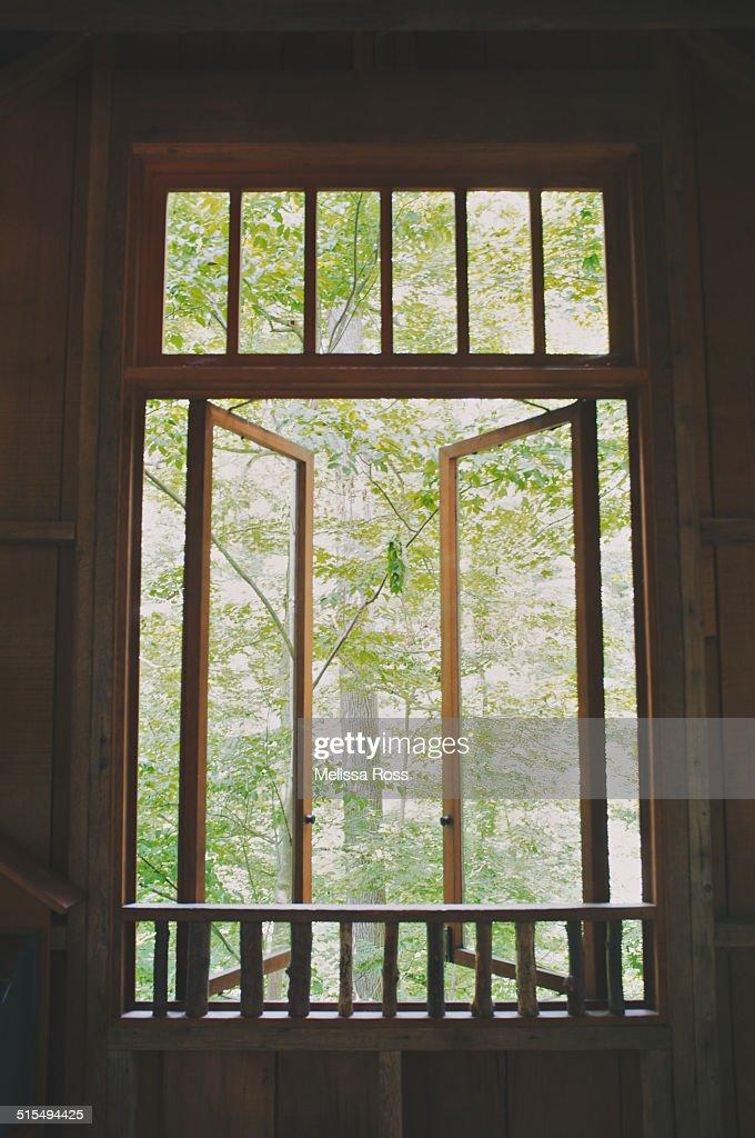 Double Open Windows : Open double pane window in a wood or forest scene stock