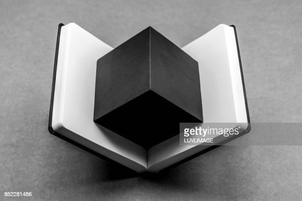 Open dummy book with a black cube shape.
