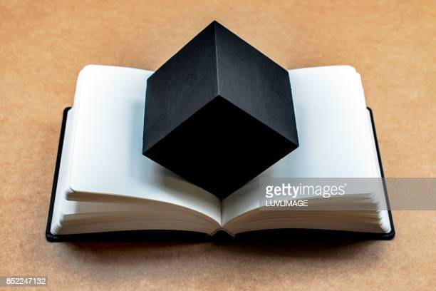 Open dummy book with a black cubic shape in the centerfold.