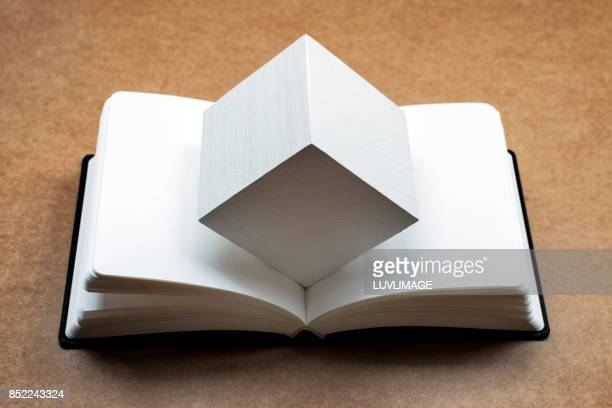 Open dummy book with a white cubic shape.