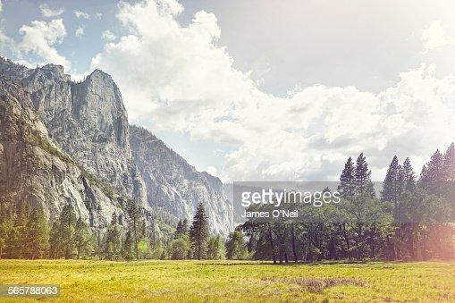 open field with background mountains