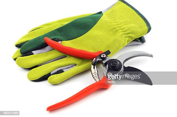 Offener Garten shears und Handschuhe