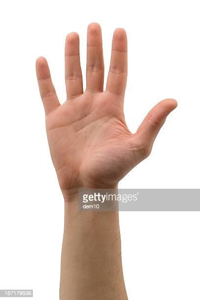Offene hand (isoliert