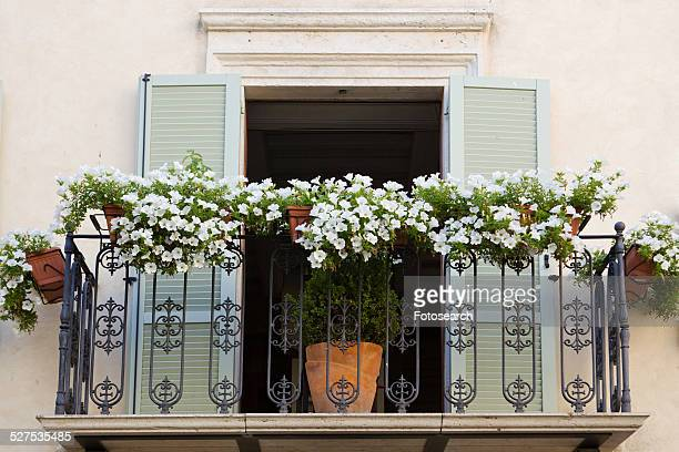 Open pale green-shuttered doorway of Renaissance palace opening onto wrought iron decorative balcony with flowers