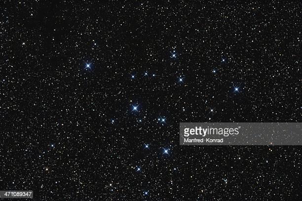 Täglich Star Cluster im Sternbild Swan