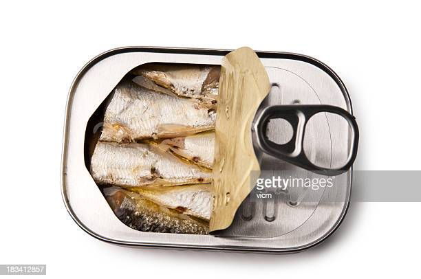 Open tin of Sardines
