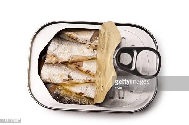 Ouvert de tin des Sardines