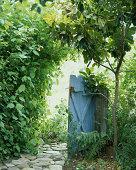 Opened garden gate