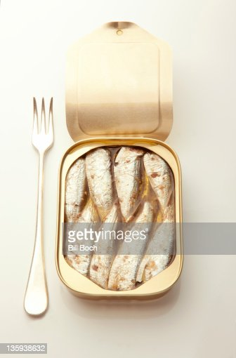 Opened sardine can with fork : Stock Photo
