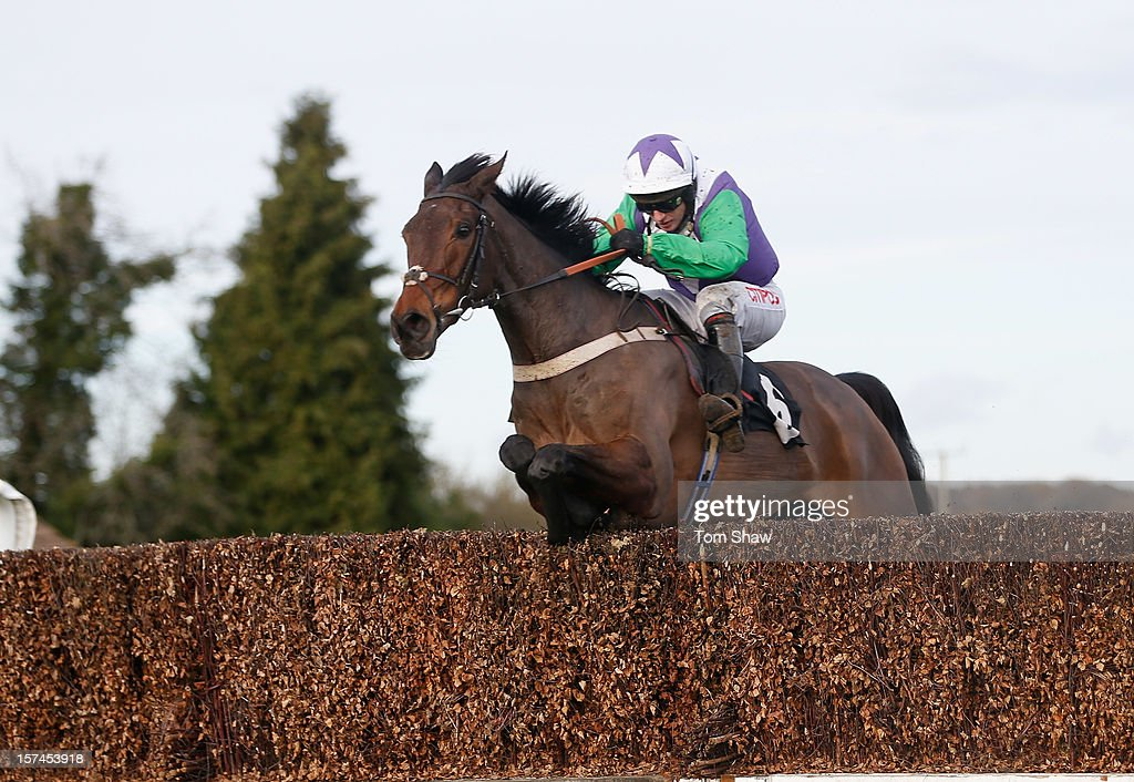 Opening Batsman ridden by <a gi-track='captionPersonalityLinkClicked' href=/galleries/search?phrase=Noel+Fehily&family=editorial&specificpeople=241420 ng-click='$event.stopPropagation()'>Noel Fehily</a> jumps the final fence to win the Jills Big Birthday Beginners Steeple Chase at Plumpton Racecourse on December 3, 2012 in Plumpton, England.