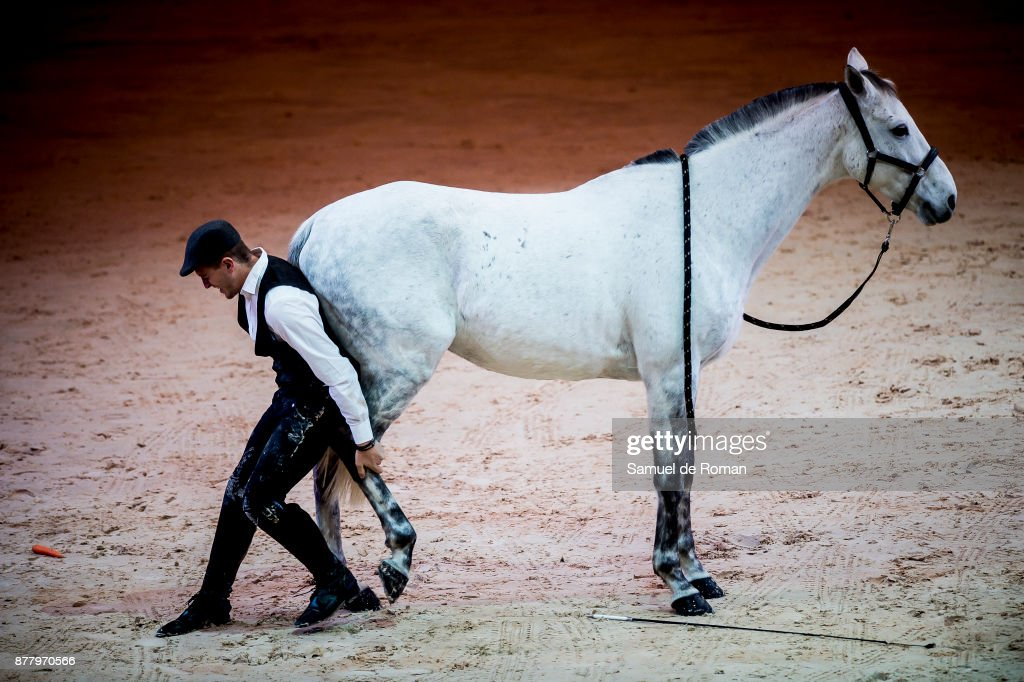 Day 1 - Madrid Horse Week 2017