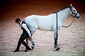 Day 1 - Madrid Horse Week 2017