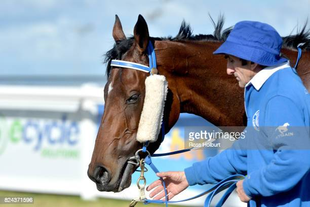 Oracabessa after winning the Drouin Golf Country Club Maiden Plate at Racingcom Park Synthetic Racecourse on July 30 2017 in Pakenham Australia