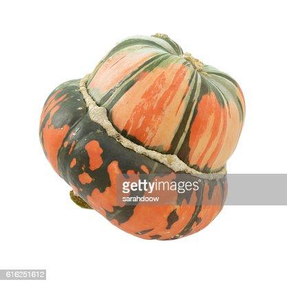 Orange and green striped Turban squash : Stock Photo