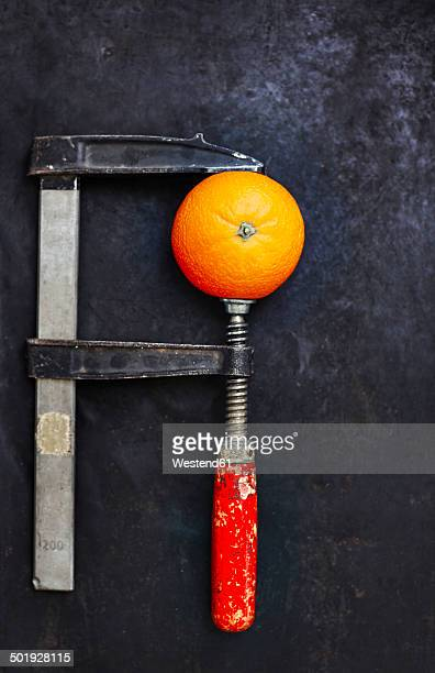 Orange fixed in bench vice on dark ground