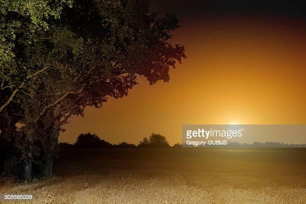 Orange full moon rising landscape