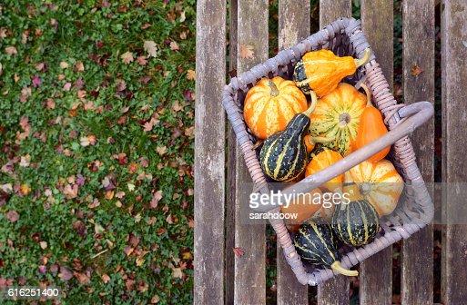 Orange, green and yellow ornamental gourds in a basket : Foto de stock