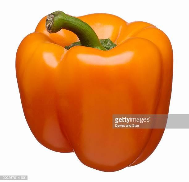 Orange Holland bell pepper