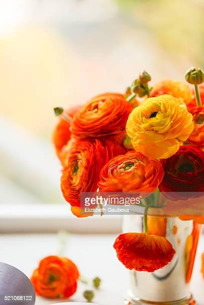 Orange Ranunculus in a Julep Cup