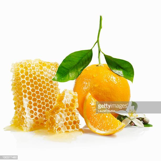 Oranges and Honeycomb with Blossom