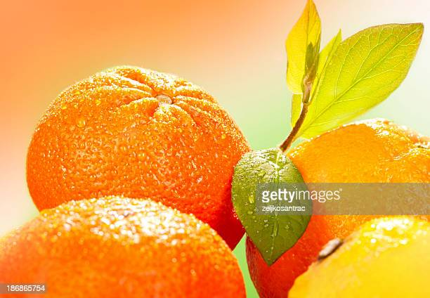 Oranges and leafs