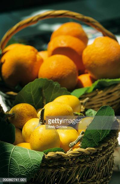 Oranges and loquats in basket, Murcia, Spain, close-up