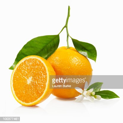 Oranges with Leaves and Blossom