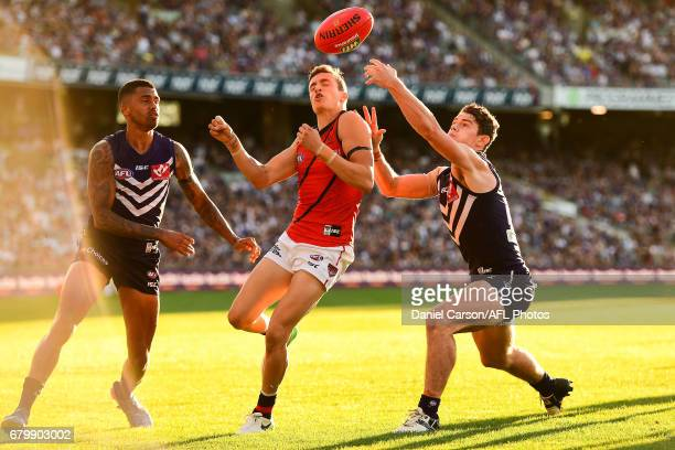 Orazio Fantasia of the Bombers contests for the ball against Lachie Neale and Bradley Hill of the Dockers during the 2017 AFL round 07 match between...