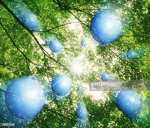Orb in Forest, Low Angle View, Composite