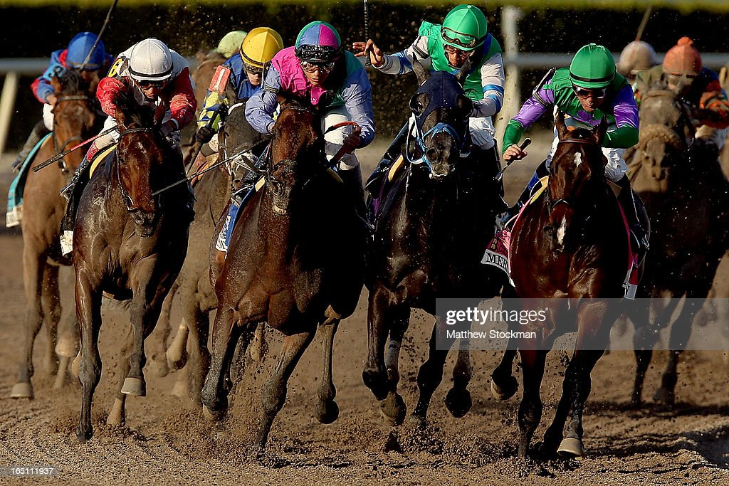 Orb #6 (L), riden by John Velazquez, comes around turn four behind Itsmyluckyday #3, riden by Elvis Trujillo, Narvaez #10, riden by Rajiv Maragh, and Merit Man #8, riden by <a gi-track='captionPersonalityLinkClicked' href=/galleries/search?phrase=Kent+Desormeaux&family=editorial&specificpeople=240631 ng-click='$event.stopPropagation()'>Kent Desormeaux</a>, during the Florida Derby at Gulfstream Park on March 30, 2013 in Hallandale, Florida.