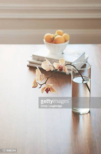 Orchid on coffee table