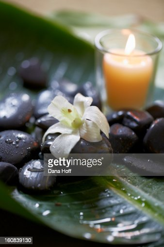orchids on massage stones with candle in zen atmos : ストックフォト
