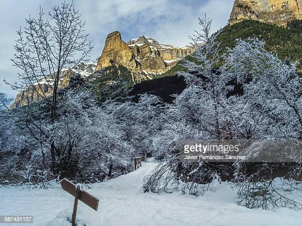 Ordesa National Park in winter