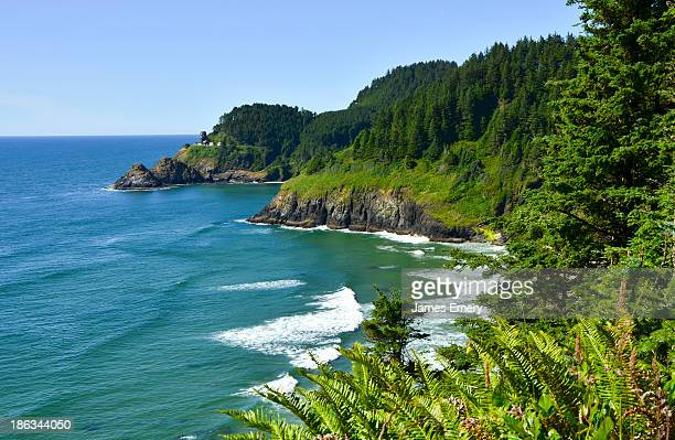 Oregon Amazing