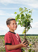 USA, Oregon, Boardman, Boy (8-9) planting trees in tree farm