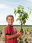 USA, Oregon, Boardman, Boy (8-9) plating trees in tree farm