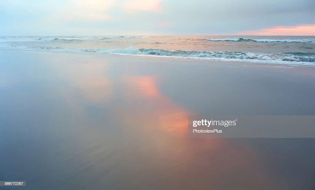 Oregon Coast in Pastels