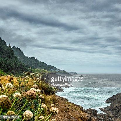 Oregon Coast - USA