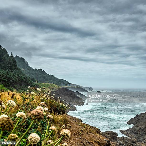 Oregon Coast - USA