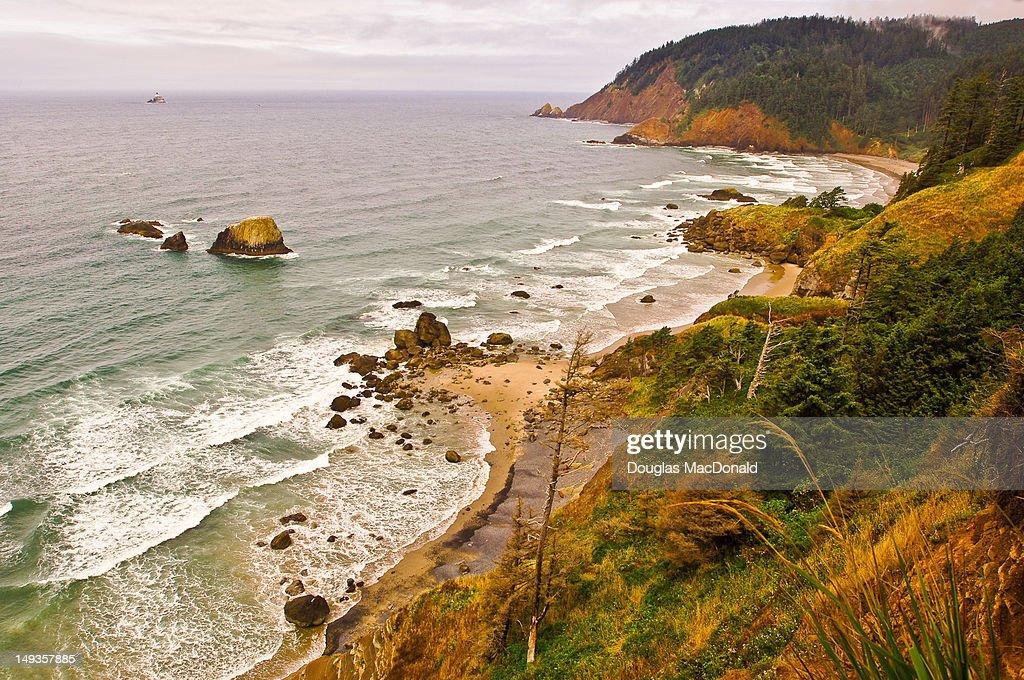 Oregon Coastline : Stock Photo