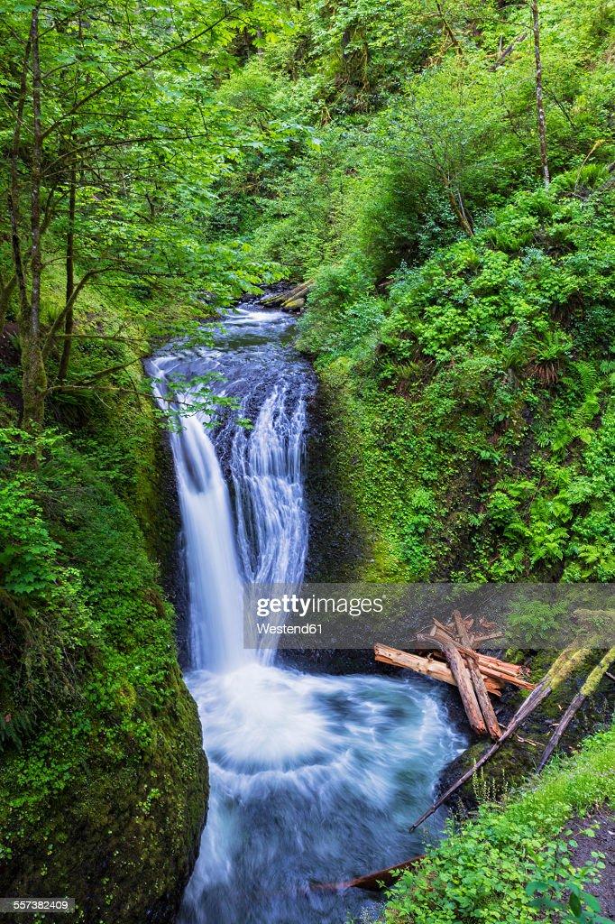 USA, Oregon, Columbia River Gorge, Multnomah County, Middle Oneonta Falls