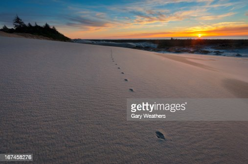 USA, Oregon, Coos County, Sunset over winter landscape : Stock Photo