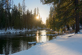 USA, Oregon, Fall River, River in winter forest