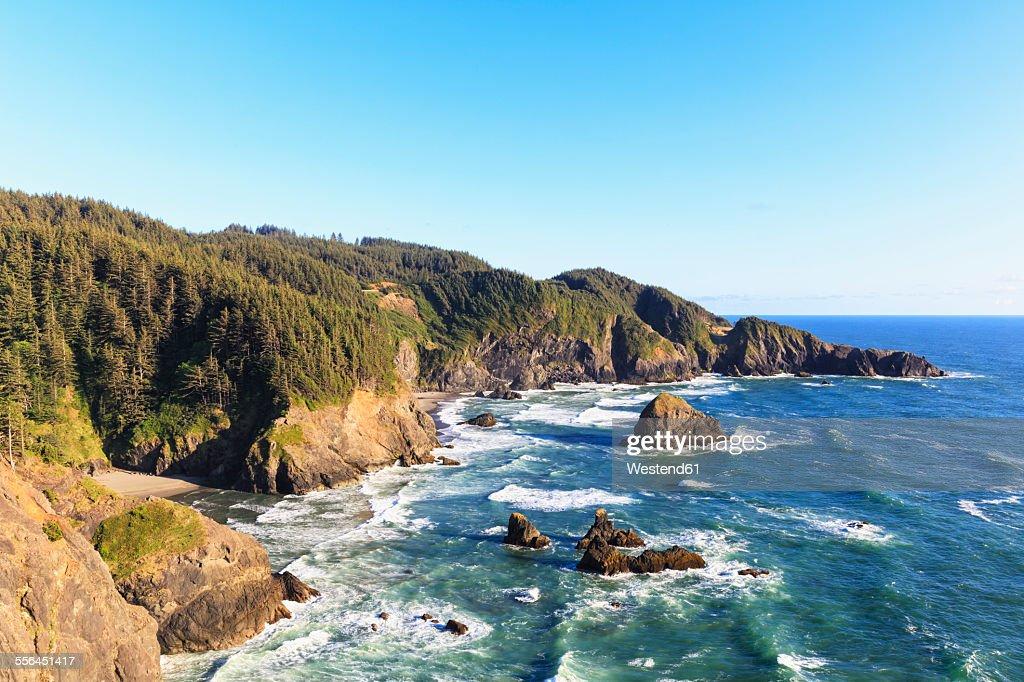USA, Oregon, Oregon State Park, Samuel H Boardman State Park, Pacific Coast