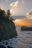 USA, Oregon, Sam Boardman State Park, Trees on cliff over sea at sunset
