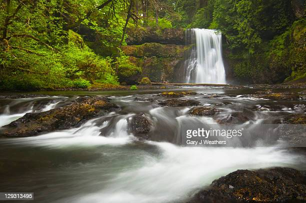 USA, Oregon, Silver Falls State Park, View of Upper North Falls