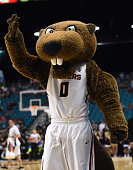 Oregon State Beavers mascot Benny the Beaver stands on the court during a firstround game of the Pac12 Basketball Tournament against the Colorado...