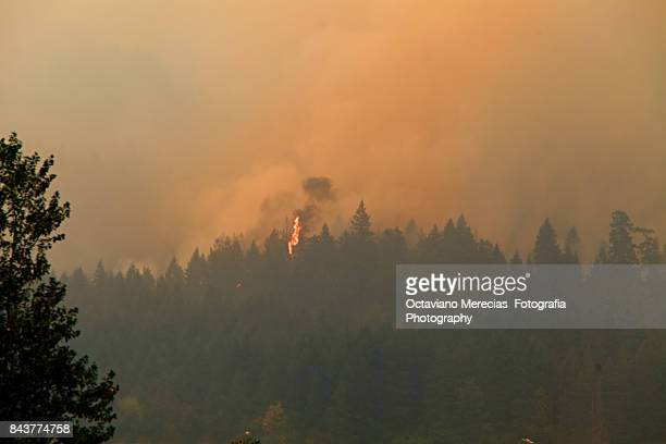 Oregon Wildfires Along the Columbia Gorge